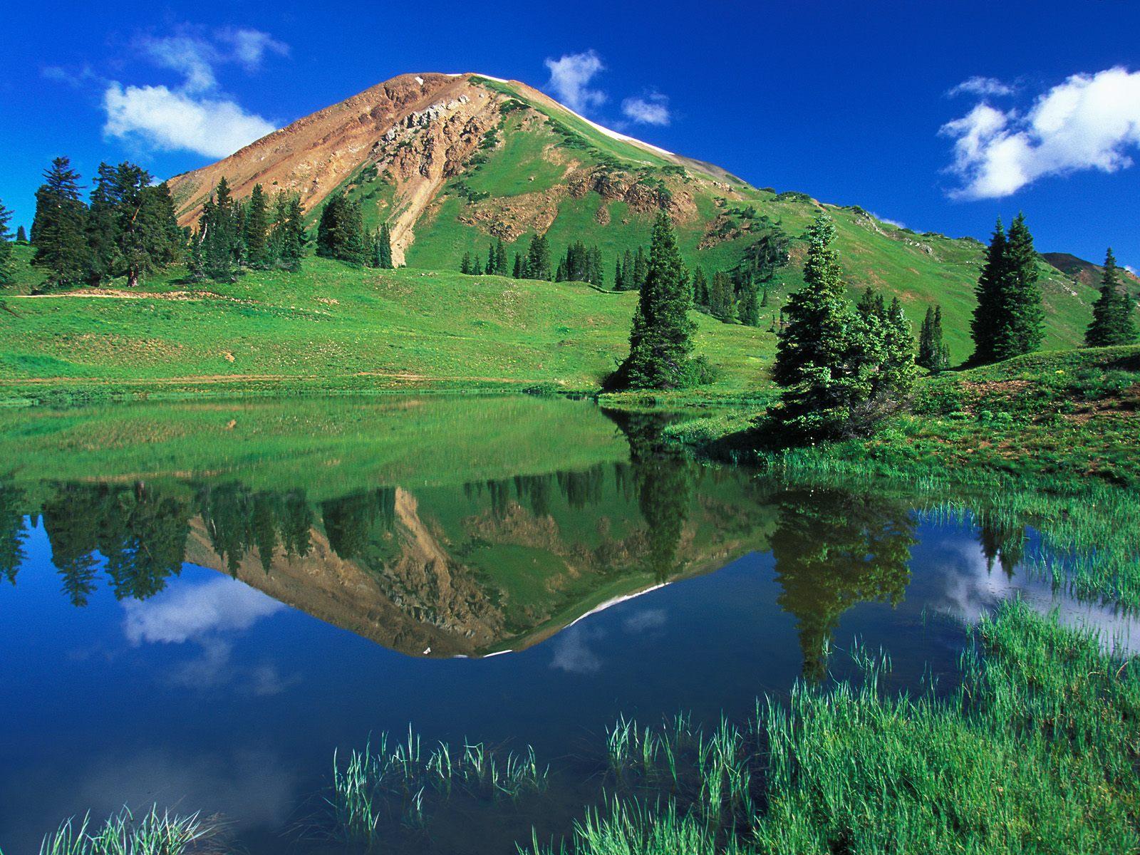 Alpine Pond Gunnison National Forest Colorado