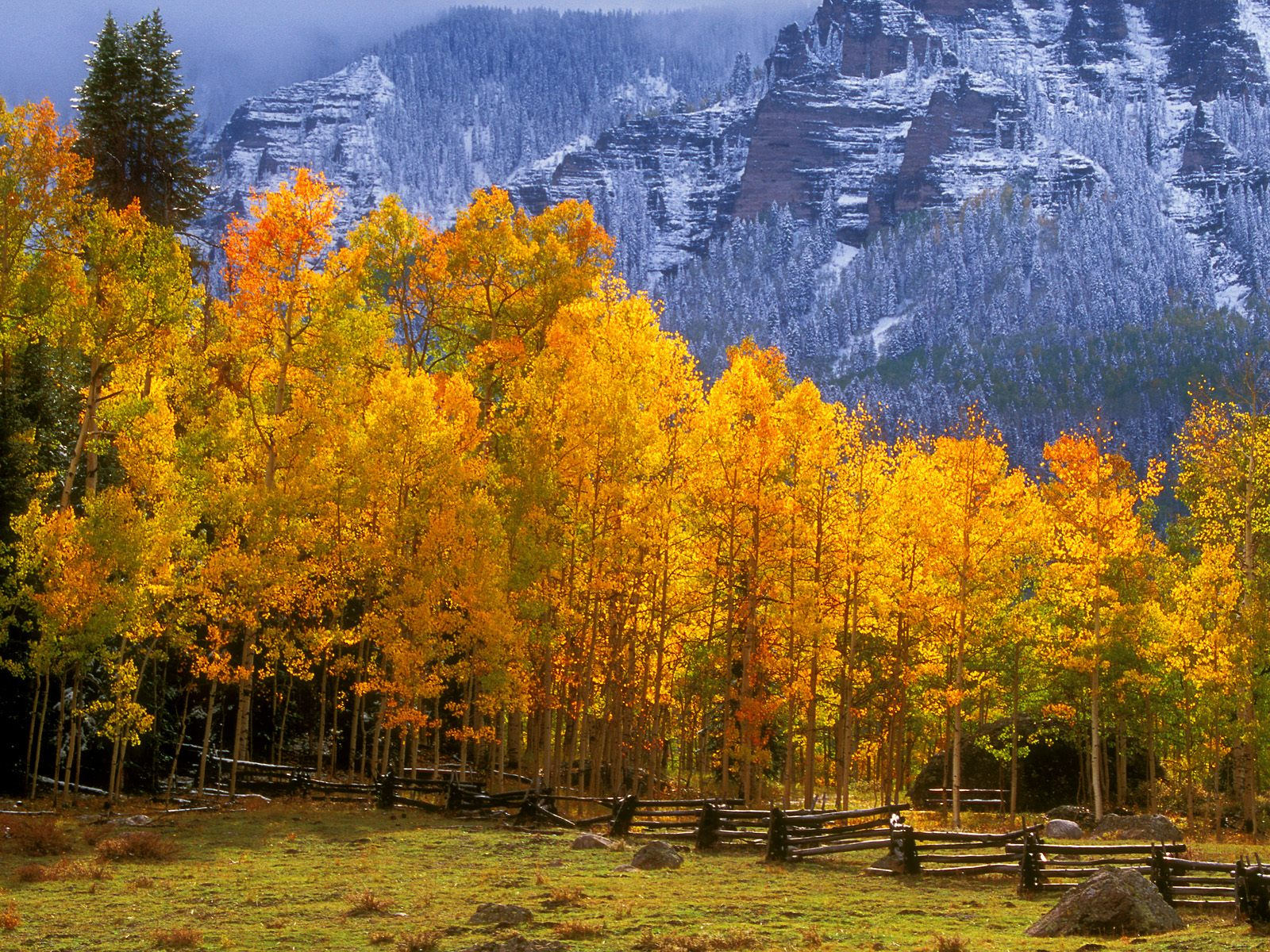 Fall In The High Country Colorado Picture Photo Wallpaper