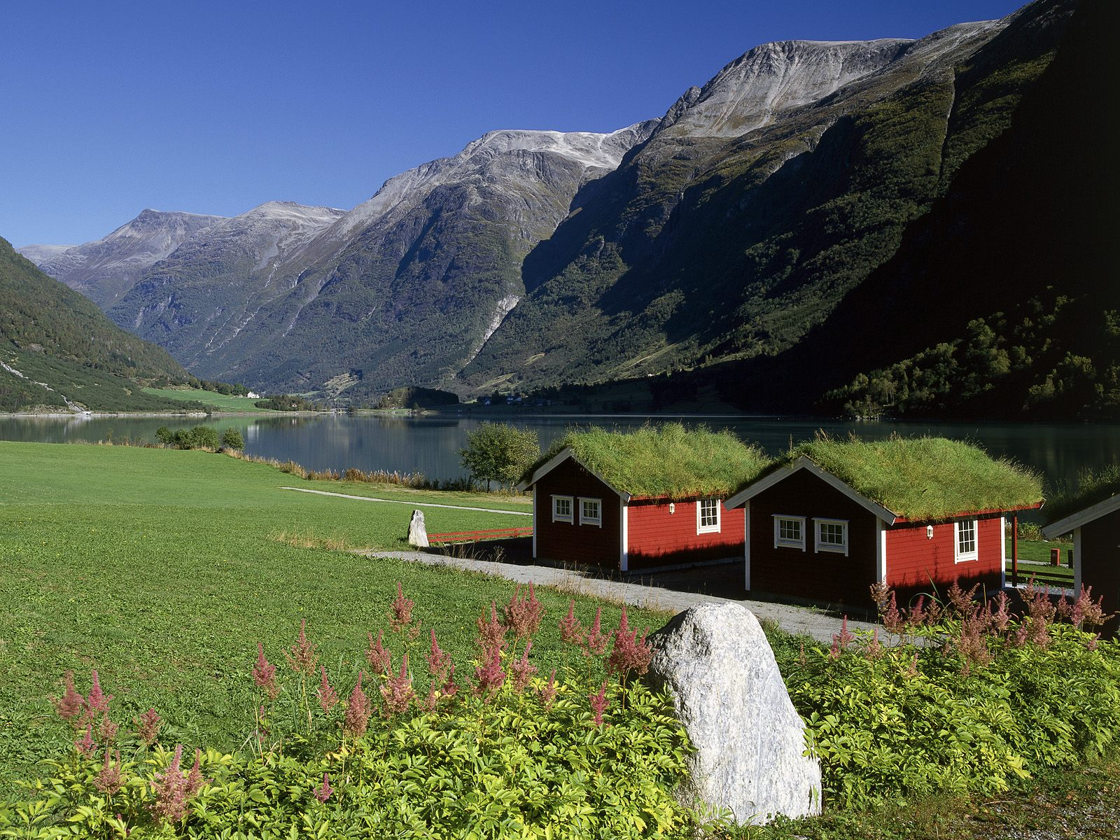Lakeside Homes Oldenvatnet Norway Picture Lakeside Homes
