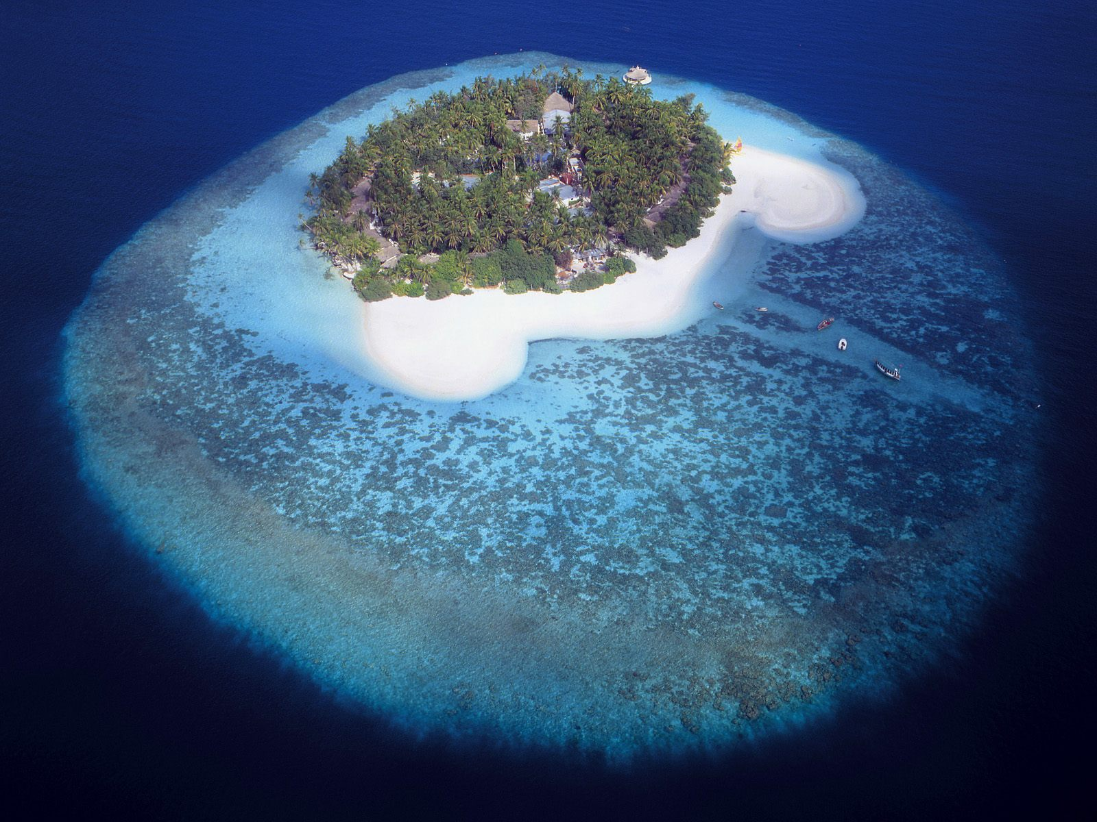 Aerial View of a Tropical Island Maldives