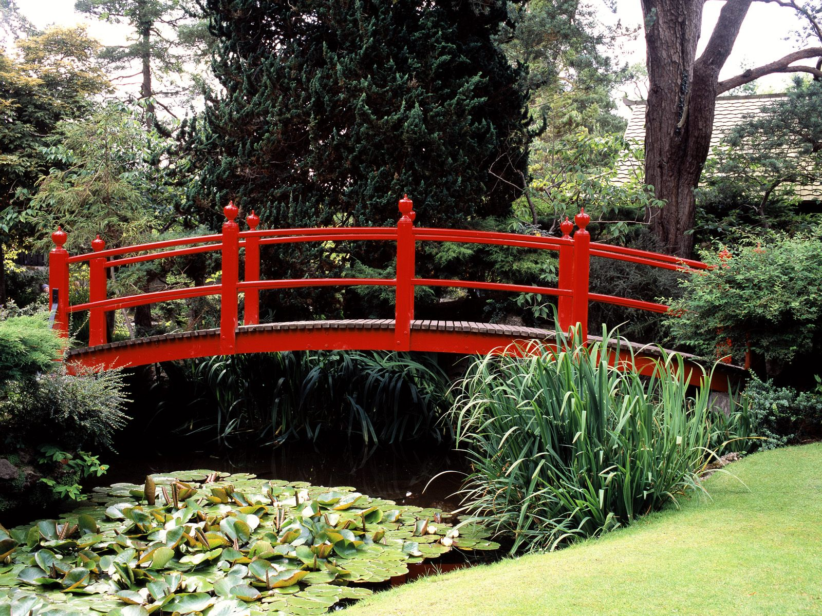 Japanese Garden County Kildare Ireland postcard Japanese