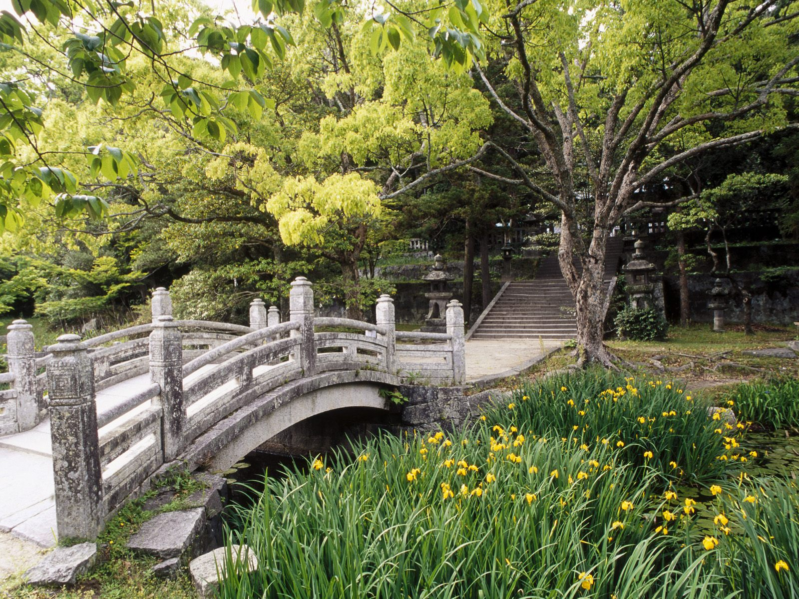 Hagi Castle Garden Western Honshu Japan photo or wallpaper
