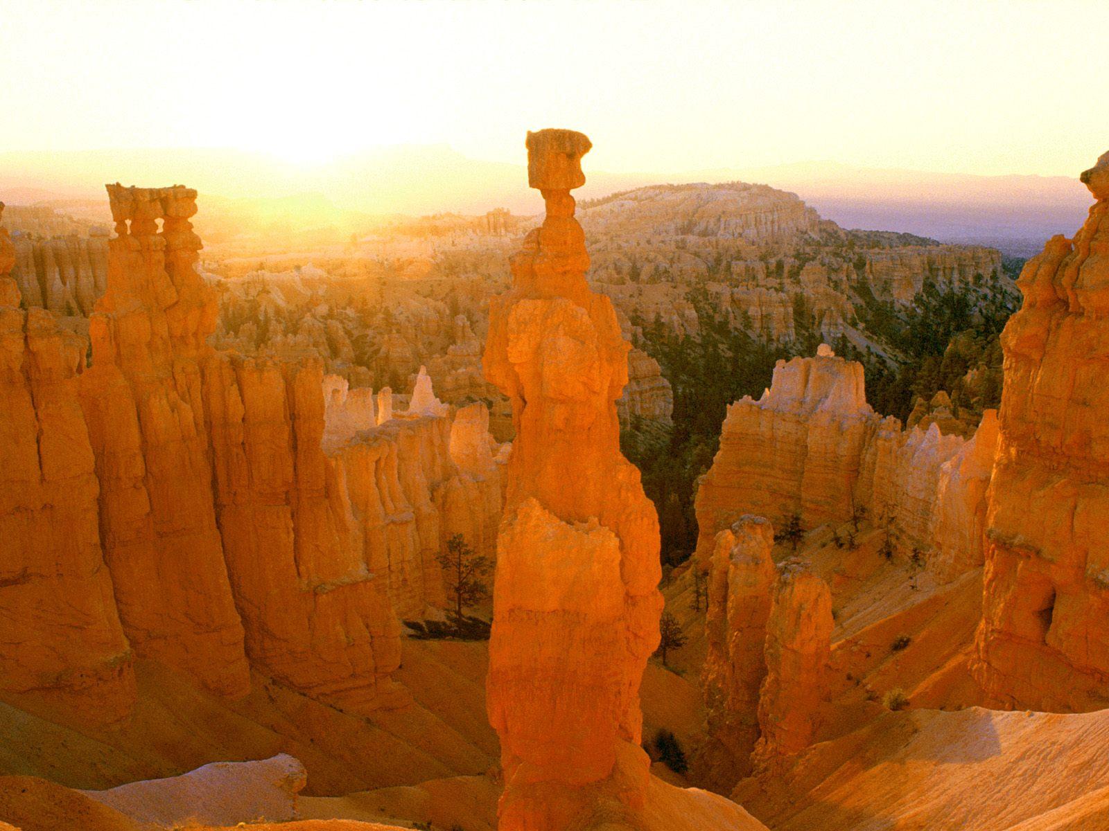 Sunrise_Colors_Thor's_Hammer_Bryce_Canyon_Utah.jpg