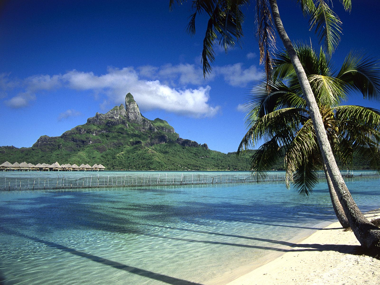 Bora Bora Shoreline French Polynesia Wallpapers for desktop tropical