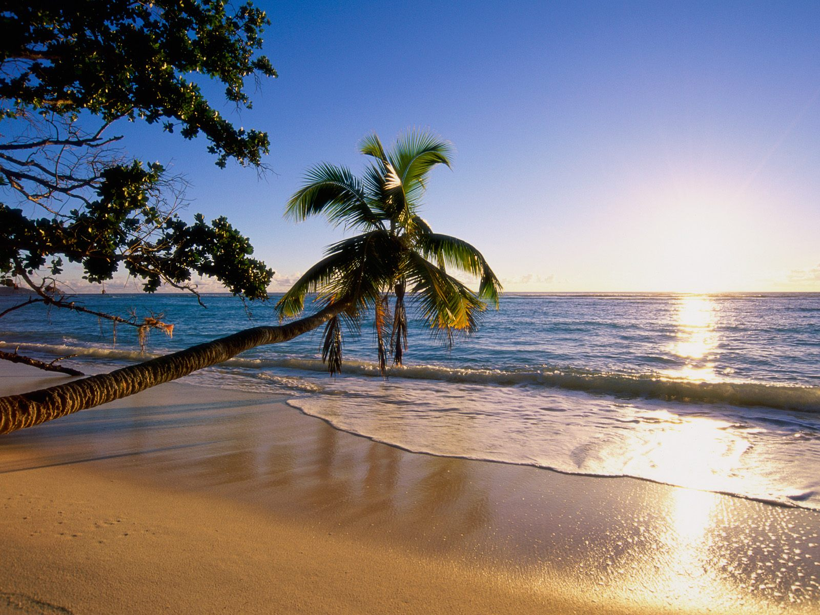 Hd Tropical Island Beach Paradise Wallpapers And Backgrounds: Silhouette Island Picture, Silhouette Island Photo