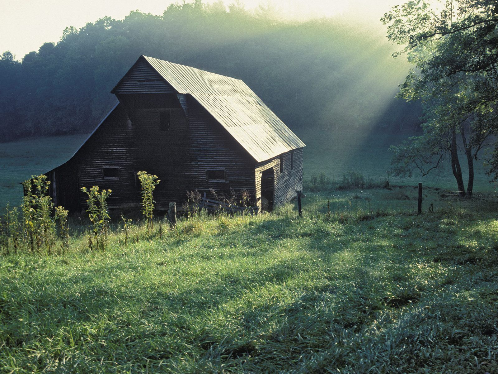 Tipton Place Cades Cove Great Smoky Mountains National Park Tennessee