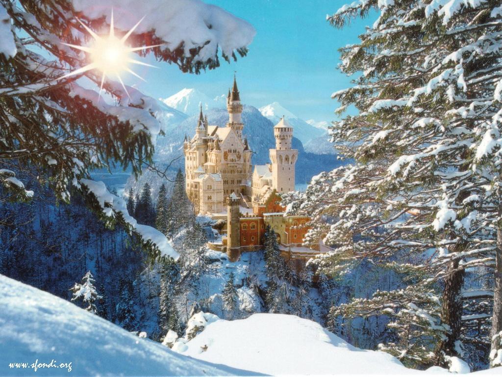Neuschwanstein Castle Bavaria Germany Sun Snow Picture Neuschwanstein Castle Bavaria