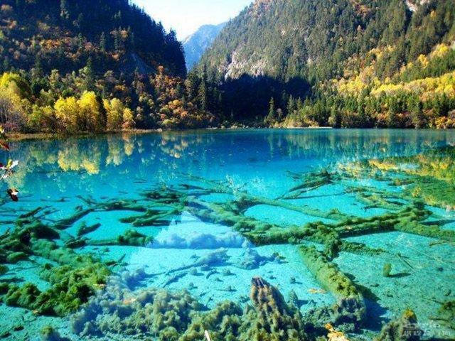 Jiuzhaigou -national-park-china