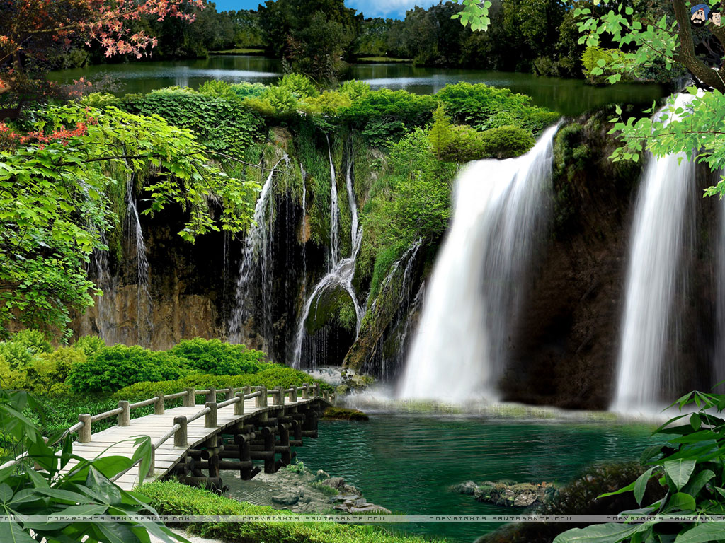 Waterfalls Forest Picture Waterfalls Forest Photo Waterfalls