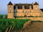 Clos de Vougeot Vineyard Vougeot France