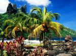 The Hatiheu Beachfront on Nuku Hiva Marquesas Islands French Polynesia