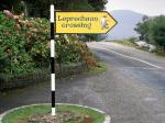Leprechaun Crossing  County Kerry Ireland